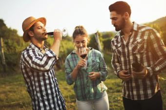 Tour privado a un viñedo